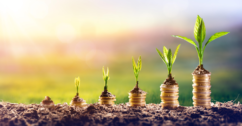 מהם היתרונות בהשקעות משולבות?